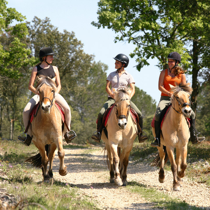 vacances villages club ile d oleron equitation